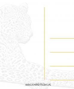 Luipaard kaart