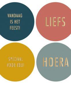Multi stickers (NL) 4 stuks